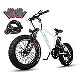 Nakto 2019NEW - Bicicleta eléctrica de Playa o Nieve de 20 Pulgadas con llanta de Grasa de 300 W/350 W 36 V/48 V/10 Ah/12 Ah con batería de Litio Shimano de 6 velocidades