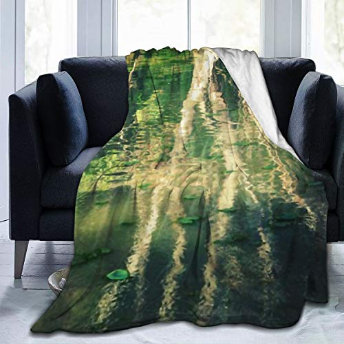 Chen Da Pu Flannel Fleece Throw Blanket, Monet Ombre Lightweight Cozy Plush Microfiber Bedspreads