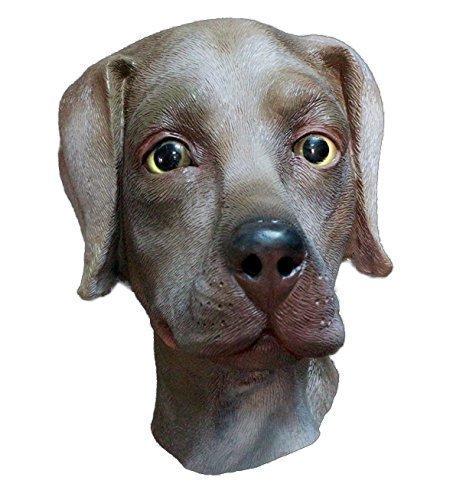 The Rubber Plantation TM 619219291385 Chocolate Labrador Mascarilla de látex para perro,...