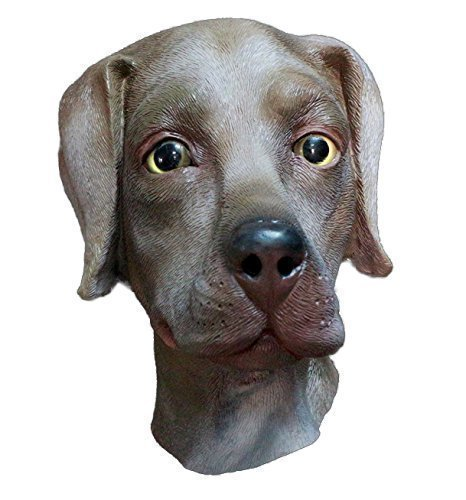 The Rubber Plantation TM 619219291385 Chocolate Labrador Mascarilla de látex para perro,...