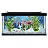 Tetra PLAYMOBIL Explore Your Aquarium 10 Gallon Kit