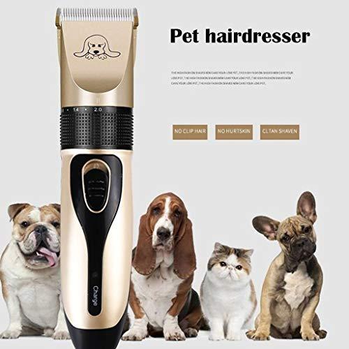 ODJOY-FAN Haarschneidemaschine Haarschneider Barttrimmer Präzisionstrimmer Hund Rasierer Clippers Wenig Lärm Wiederaufladbar Schnurlos Elektrisch Ruhig Haarschneidemaschinen (Gold, 1Set)