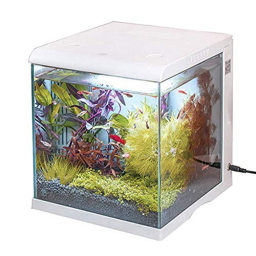 Zixin Smart Fish Tank Glas Klein voll gekapselt Aquarium Goldfish Bowl Eco-Zylinder-Noten-Schalter Desktop Home-Dekor, mit Wasserpumpe Lampe Filter, for Home Office, Rosa (Color : White)