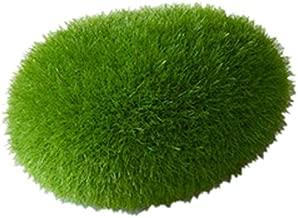 pianta per Acquario Decorazione Paesaggio Abiliedi Marimo Moss Ball gamberetti chiocciole Che suonano alghe