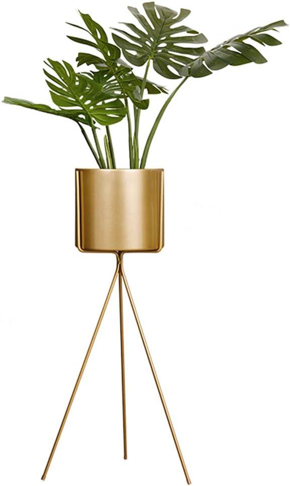 Bodenblumentopf St/änder f/ür Wohnzimmer Schlafzimmer Anzeigefenster Veranda YQQ-Racks Hoch Indoor Pflanze Stand mit /Übertopf 2 in 1 Modern Metall Goldene