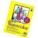 Paper 300 Series Watercolor Class Pack, Cold Press, 1 Pack, Original Versio, 24 Sheet (New Version)
