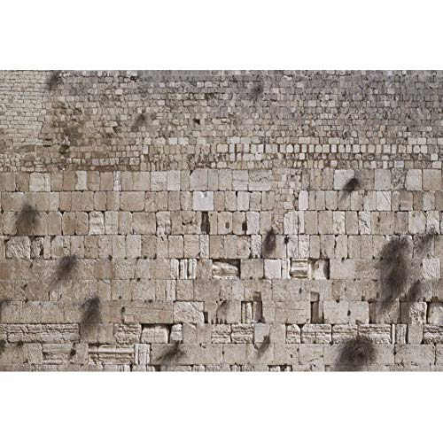 CSFOTO 12x8ft Western Wall Backdrop Jerusalem Judaism Wailing Wall Ruins Background for Photography Judaism Event Decor Banner Room Decor Wallpaper Audlts Photo Booth