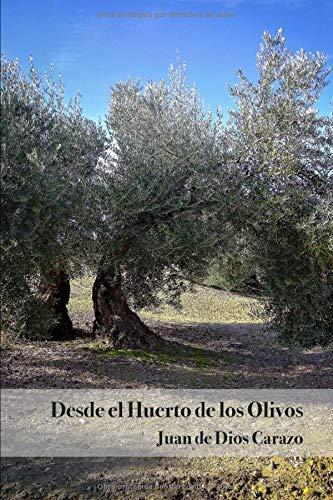 Desde el Huerto de los Olivos
