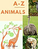 A - Z Animals: Baby books first year