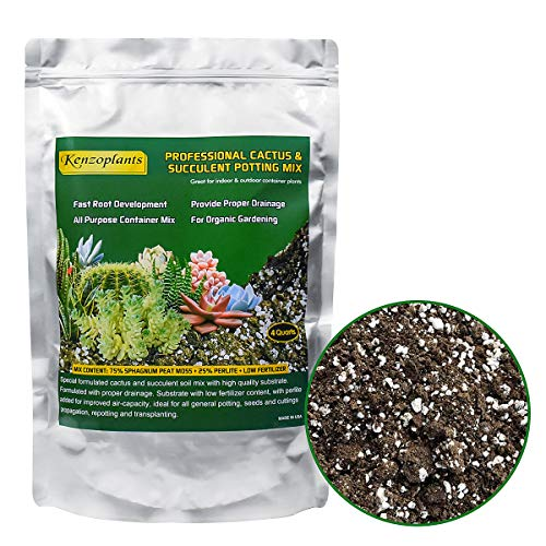 Succulents & Cactus Soil Mix, Professional Potting Soil, Fast Draining Pre-Mixed Blend,...