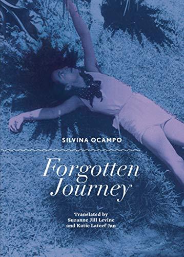 Forgotten Journey (English Edition)