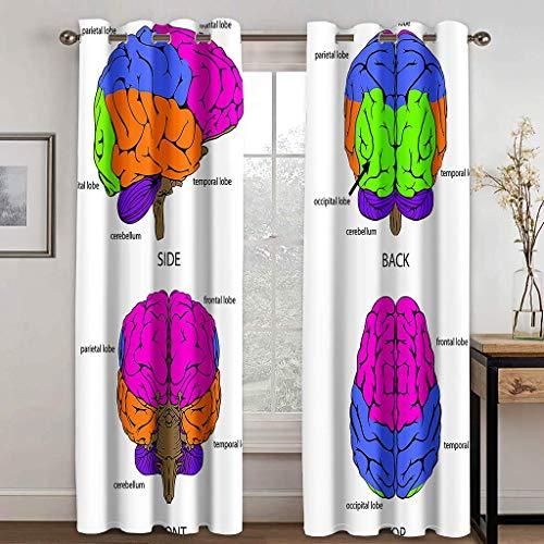 Cortinas Aislantes Térmicas Impresión 3D - con Ojales,Reducir el Ruido y Aislantes Térmicas - Decoración del hogar para salón y Dormitorio - Cerebro 2X(140x180) cm
