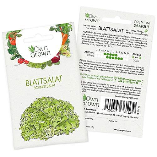 OwnGrown Premium Schnittsalat Samen (Verde ricciolina), Blattsalat Samen zum Anbauen, Schnittsalat Saatgut für rund 1000 Pflanzen