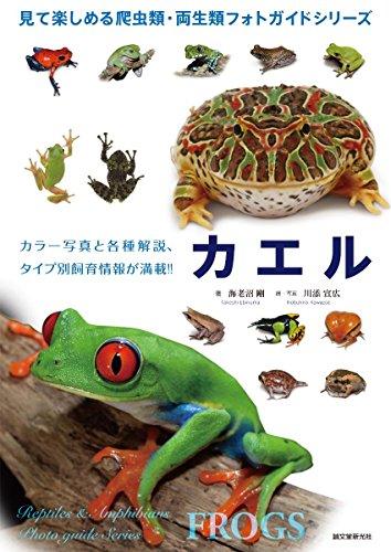 カエルamazon参照画像