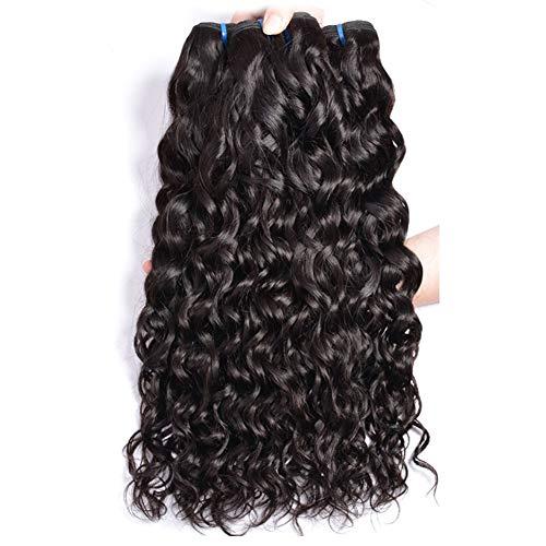 ur Beautiful 8A Brazilian Hair 3 Bundles Curly Human Hair Bundles Water Wave Hair Brasilianisches lockiges Haar 100% jungfrau Brasilianische Haare 12 14 16 Zoll Natural Color insgesamt 300g