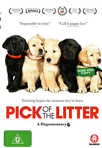 Pick Of The Litter: A Dogumentary [USA] [DVD]