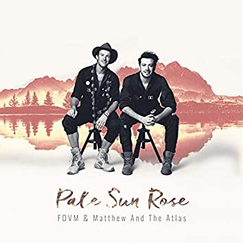 Pale Sun Rose
