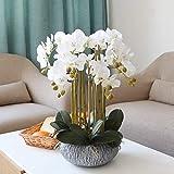 NNR Flores Artificiales Artificial Flores de la orquídea Cerámica Bonsai Falso Orquídea disposición 10 Jefes de Plantas en Maceta Phalaenopsis por Home Party Decor (Blanco) Decoración hogareña