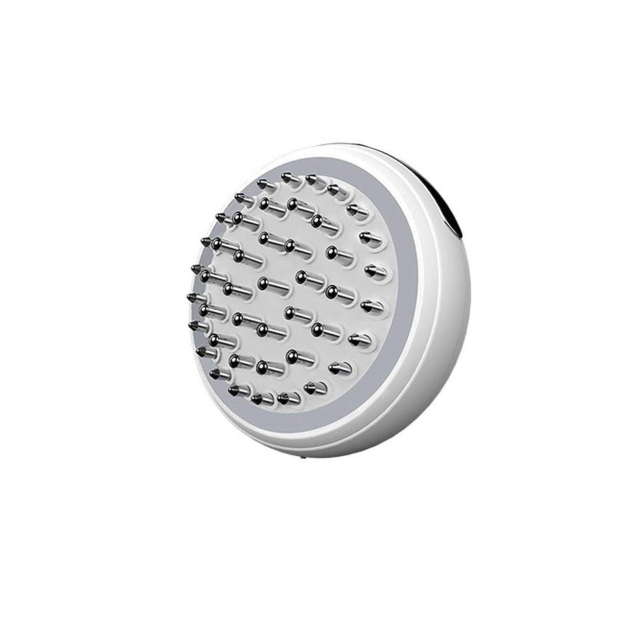 フォージ種順応性のあるヘアコーム家庭用EMSマイクロ電流Ionマッサージくし赤外線健康開発マッサージ機器