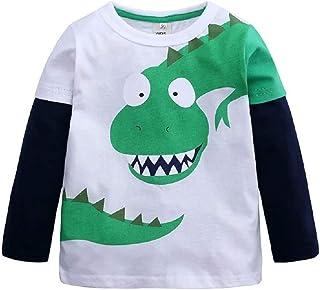 Hooyi Camiseta de Dinosaurio para Niños Pequeños Top de Manga Larga Cuello Redondo Camisa de Fondo