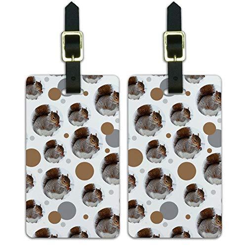 Graphics & More Maleta equipaje equipaje equipaje equipaje etiquetas de identificación animales-ardilla comiendo en invierno, blanco