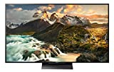 Sony KD-65ZD9 164 cm (Fernseher)