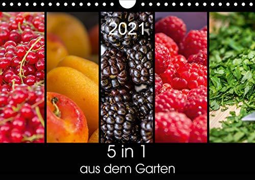 5 in 1 - aus dem Garten (Wandkalender 2021 DIN A4 quer)