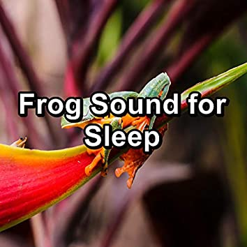 Frog Sound for Sleep