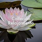 Colleción Relajamiento: Piano, Guitarra, Cuencos Tibetanos,