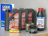 Mantenimiento Set Yamaha yxr 700Rhino Inspección Aceite de aceite Bujía Service