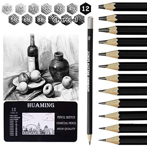 Bleistifte Set, Surcotto 9 Bleistifte mit 3 Kohlestifte, 1 Spitzer und 1 Radiergummi, 2H H HB B 2B 4B 5B 6B 8B, Zeichenstifte für Anfänger Künstler, professionelle Skizzierstifte Graphitstift