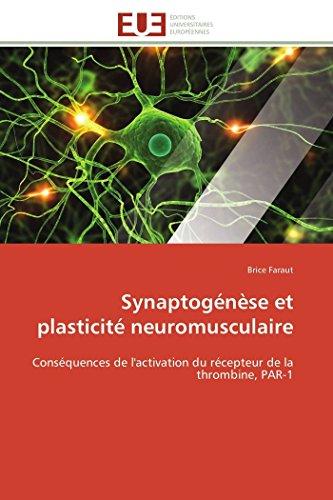 Synaptogénèse et plasticité neuromusculaire: Conséquences de l'activation du récepteur de la thrombine, PAR-1 (Omn.Univ.Europ.)