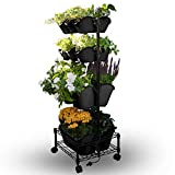 Watex Mobile Green Wall (Double Frame, Black), BPA Free Planters