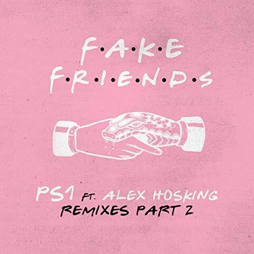Fake Friends (Remixes Pt. 2)