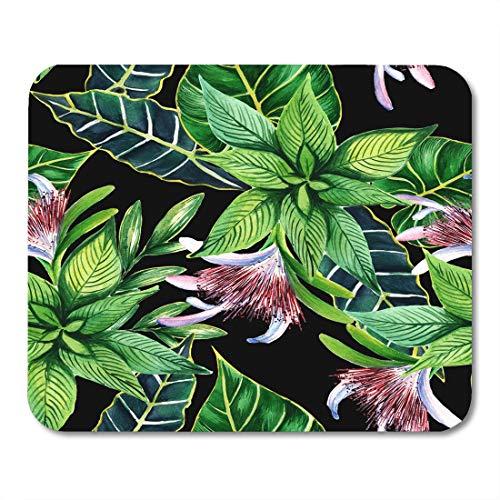 Preisvergleich Produktbild Mauspad Afrika Tropisches Hawaii verlässt Palme im Aquarell-Stil Aquarelle Wildblume für Muster-Grenzbüro liefert Mauspad Zoll Zoll Mousepad