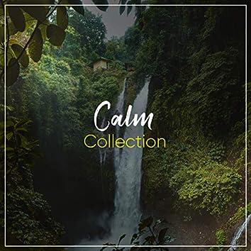 # 1 Album: Calm Collection