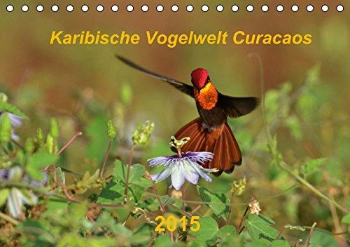 Karibische Vogelwelt Curacaos (Tischkalender 2015 DIN A5 quer): 13 Aufnahmen aus der Vogelwelt Curacaos (Tischkalender, 14 Seiten)