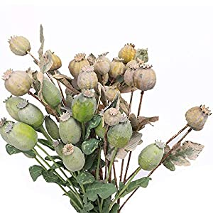 Artificial Flowers Poppy Fruit Nuts Artificial Flowers Arrangement Supplies, Hotel mall Decor Fake Plants with Leaves Poppies