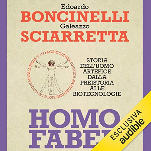 Homo faber audiobook cover art