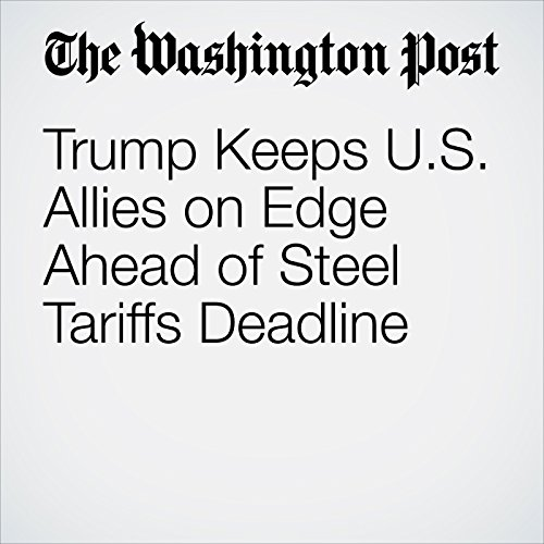 Trump Keeps U.S. Allies on Edge Ahead of Steel Tariffs Deadline copertina