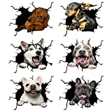 6 Stück 3D Hund Aufkleber, Crack Auto Aufkleber, Liebenswerte Wandtattoos 3D Hund Auto Fenster und Autoaufkleber Haustier Aufkleber für Auto, Wand, Kühlschrank, Toilette