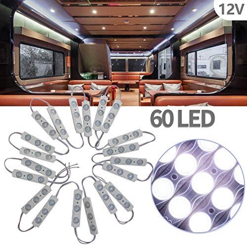 Biqing LED Auto Interni Kit,Luci Interne per Camper Striscia LED 12V 60 LEDs Auto Luci Lampadine Plafoniera Luci Lettura per Camper Camion Capannone Cabina Armadio Rimorchio(20 Modulo)