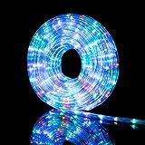 Nataland Tubo Luminoso 20 Metri con 480 Led, Controller 8 Funzioni Con Illuminazione Per Interno Ed Esterno, Perfetto Per Decorare Casa, Giardino, Vetrine e Negozio (Multicolor, 480 Led - 20 Metri)