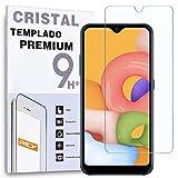 REY Protector de Pantalla para Samsung Galaxy A02s - Galaxy A02, Cristal Vidrio Templado Premium