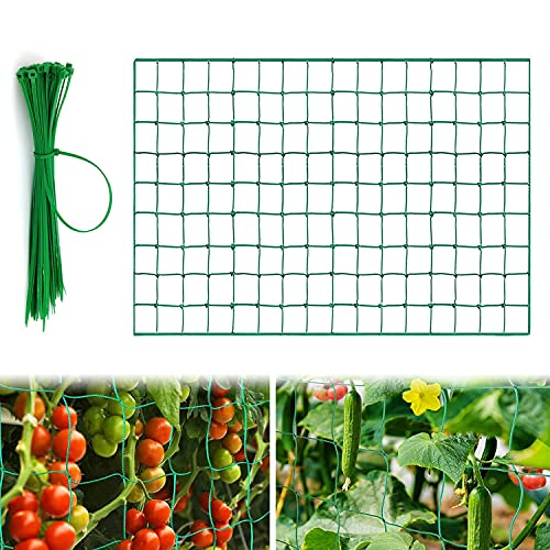 Ranknetz Rankhilfe Garten, Rankhilfe Netz für Garten, Ranknetz für Gurken, rankhilfe für kletterpflanzen, für den perfekten Wachstum von Gurken, Tomaten und Kletterpflanzen (2 * 2.5m)