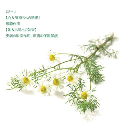 クナイプジャパン クナイプ バスソルト カミーレの香り 850g クナイプジャパン