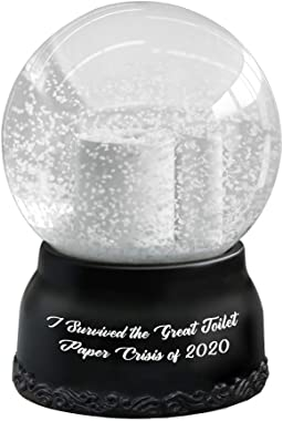 Hilarious Toilet Paper Snow Globe I Survived The Great Toilet Paper Crisis of 2020 Cute Tiny Crystal Clear Glass Snow Globe,