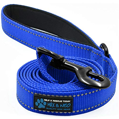 Max and Neo Reflective Nylon Dog Leash - We Donate a Leash to a Dog Rescue for Every Leash Sold (Blue, 4x1)