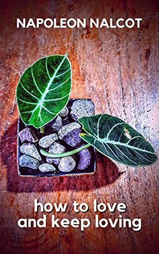 how to love and keep loving (English Edition)