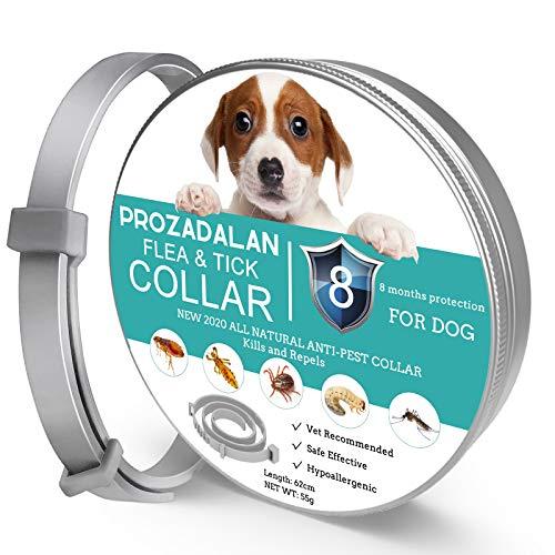 ProHomer Collar Antiparasitario para Mascotas Perros, Plagas Repelentes para Mascotas, Tamaño Ajustable e Impermeable, Mata a Los Huevos de Insectos (63 cm)